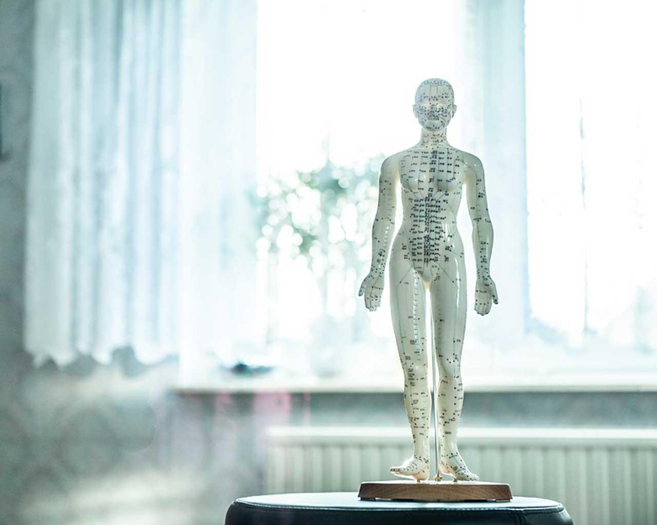 Osteopathie - Untersuchung und Behandlung von Kopf bis Fuß