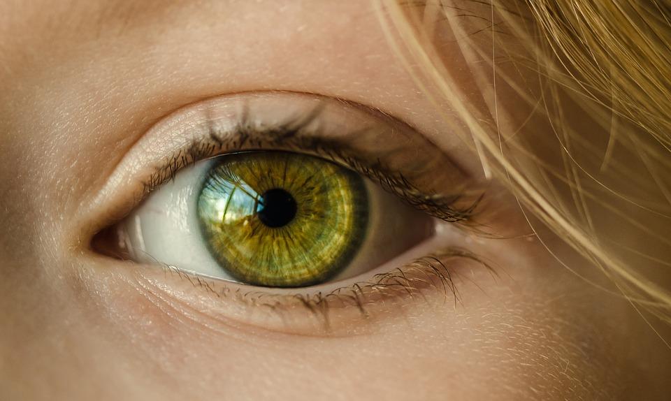 Iris-Diagnose
