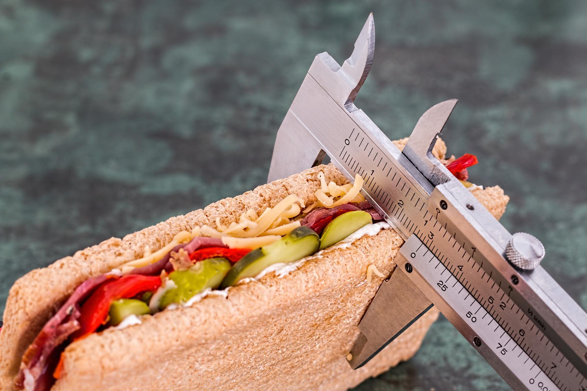 Ernährungsberatung mit BIA und Antioxidantienmessung